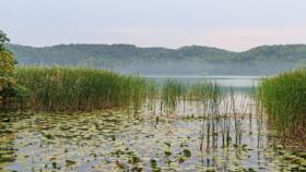 Озеро Шермютцельзе в Букове, Бранденбург, Германия / Lake Schermützelsee, Buckow, Brandenburg, Germany / © A.Savin CC BY-SA 4.0, FAL
