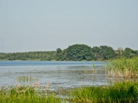 Вид на озеро в городе Галиче Костромской области / View to the lake in Galich, Kostroma Oblast, Russia / © Florstein CC BY-SA 4.0, FAL
