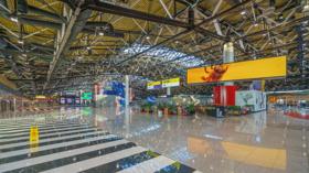 Sheremetyevo Airport, Moscow Oblast, Russia / Международный аэропорт Шереметьево / © A.Savin CC BY-SA 4.0, FAL